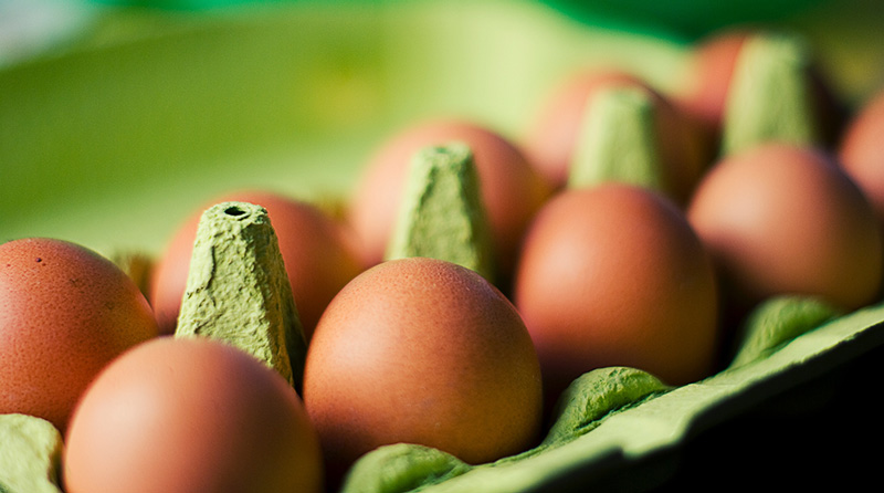 Cage-Free Eggs Coming to Dollar Stores