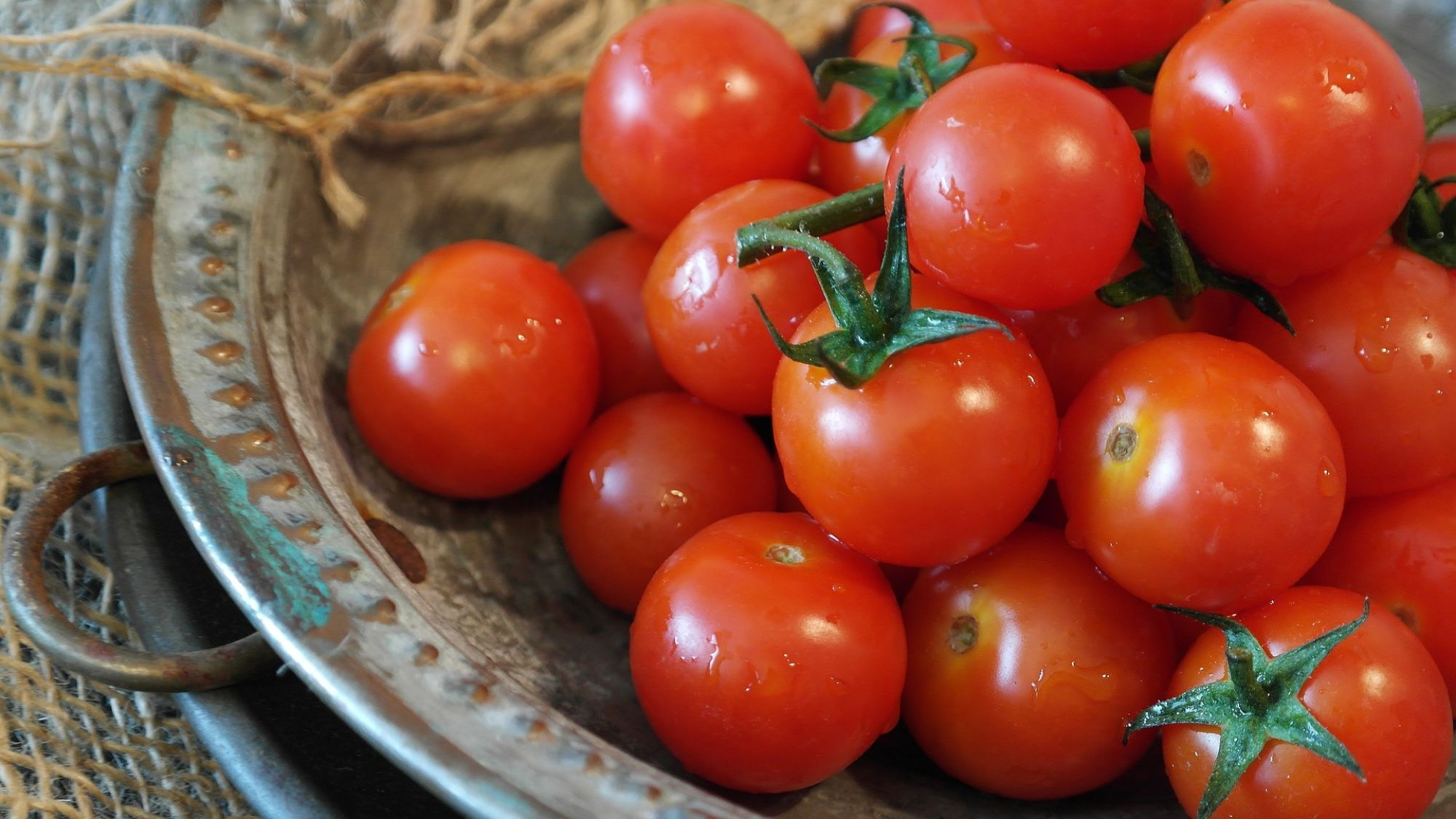 Should You Put Tomatoes in the Refrigerator?